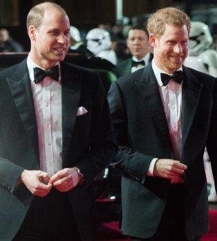 Юные и смешные: в сеть попало архивное фото принцев Гарри и Уильяма (фото)