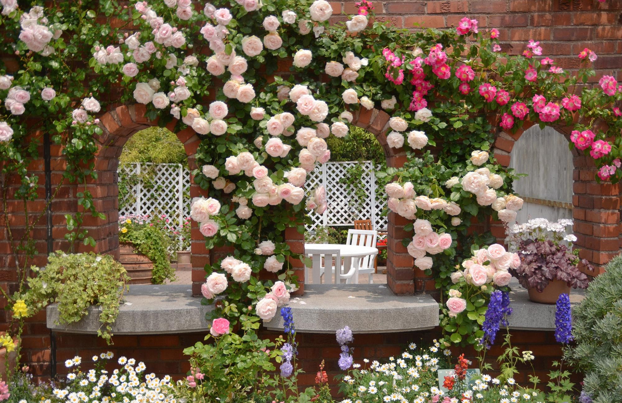 Решение ландшафтного оформления розами